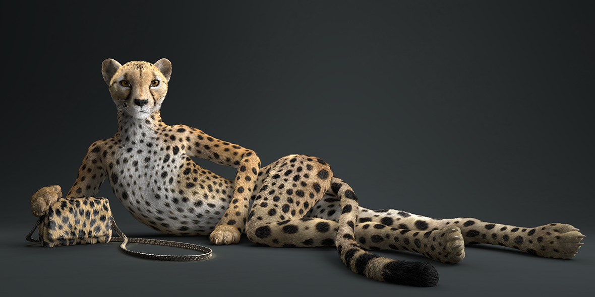 cheetah_0003_c_new_wide