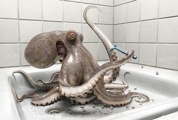 Playstation | Octopus