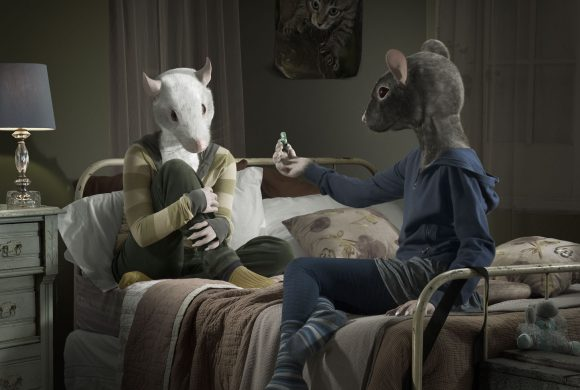 Above the influence | Animals